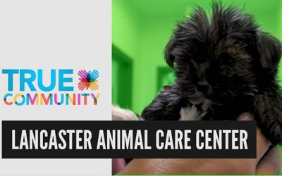 Lancaster Animal Care Center | True Community
